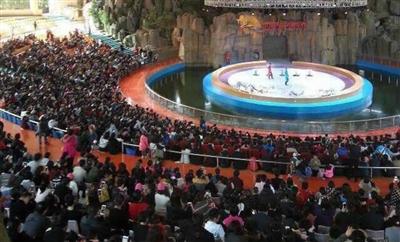 杭州野生动物世界人气爆棚